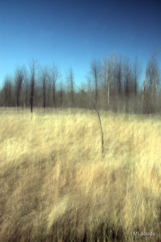 The Prairie Breeze by MLabuda