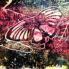 Butterfly Print 4 by Holly Daniels