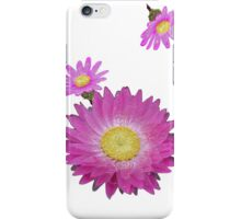 Pink Daisies iPhone Case/Skin