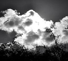 la nuvola by Pierpaoloph