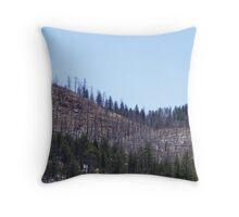 Hayman Fire Scars Throw Pillow