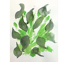 Abstract leaves, watercolor Photographic Print