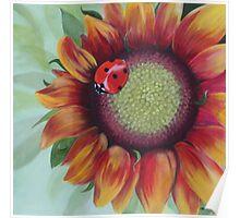 Ladybug Ladybug...... Poster
