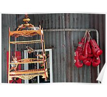 Birds in a cage Poster