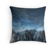 """Heading South"" Throw Pillow"