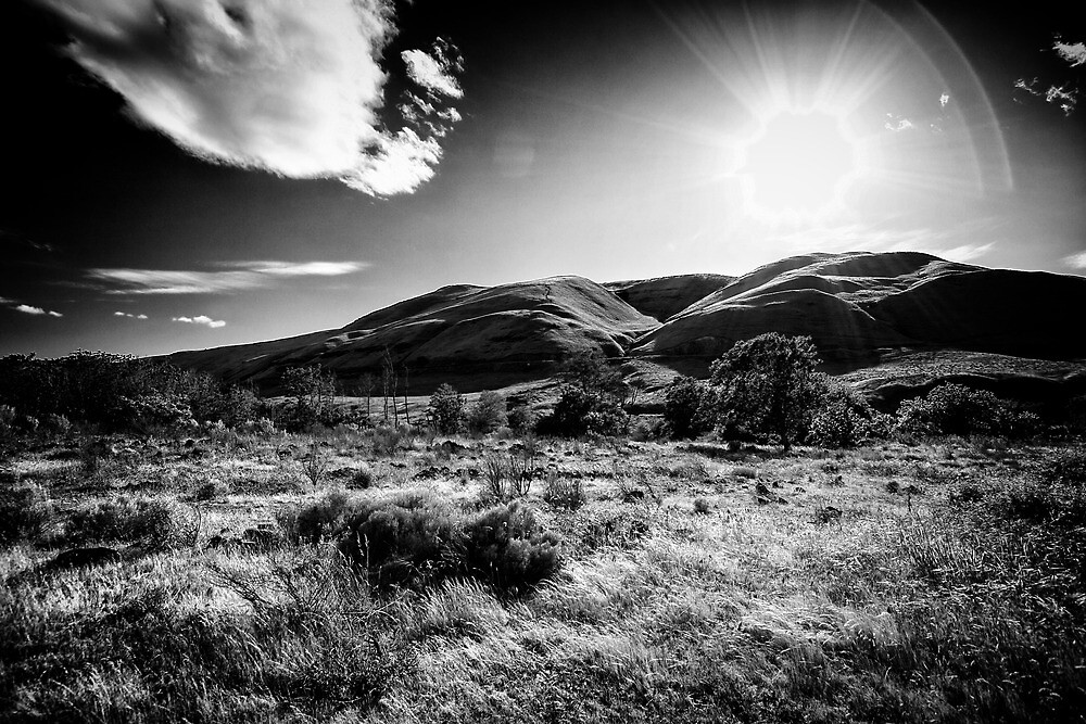 Sun on the Deschutes River Trail by Tula Top