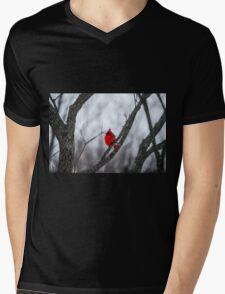 Cardinal In A Snow Storm Mens V-Neck T-Shirt