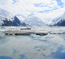 Peace. at Portage Glacier. by MerishaLucinde