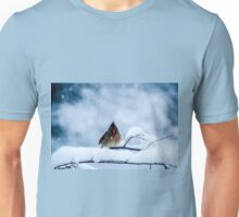 Winter Blues Unisex T-Shirt