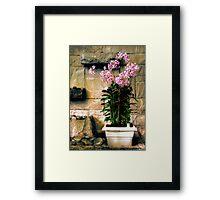 Decorative Flowers Framed Print