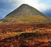 Mountain and Moor by Rupert Connor