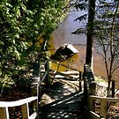 Stairs at the Wakefield Bridge, Quebec by Shulie1
