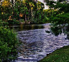 Lake Alice by DBGuinn