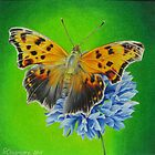 Butterfly #2 by lanadi