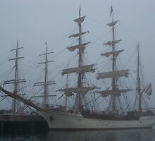 Atlantic Fog by Mike  MacNeil