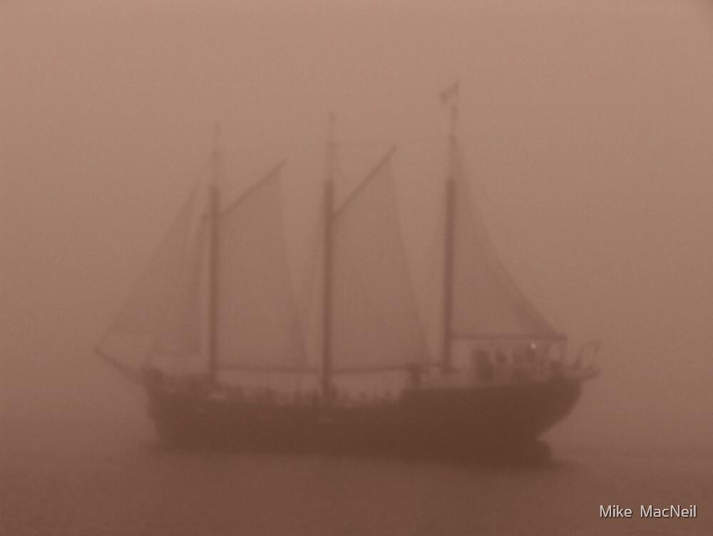 Misty Moisty Morning by Mike  MacNeil