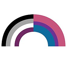 Bi-asexual Photographic Print