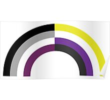 Non-Binary Asexual Rainbow Poster