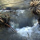 Snowmelt Creek by Bellavista2
