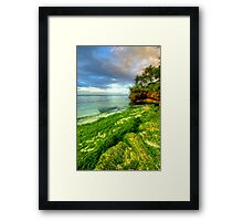 Going Green Framed Print