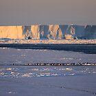Antarctica by Doug Thost