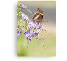 Geisha girl - butterfly feeding. Canvas Print