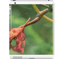 Fall Leaf Caught in a Web iPad Case/Skin