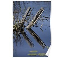 Reflective Pond Poster
