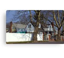House behind the trees Canvas Print