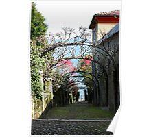 Arches. Isola Madre, Lago Maggiore, Italy 2011 Poster