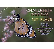 Banner Nature Photography Challenge Group Photographic Print