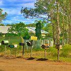 HDR Mailboxes, NSW, by PollyBrown