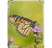 Monarch Of Raymore Park iPad Case/Skin