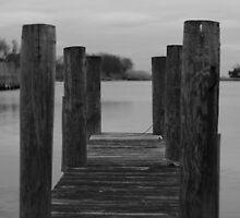 The Dock by RogerEchauri