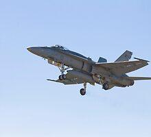 Hornet Away by Bairdzpics