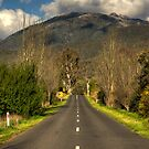 Heading for the hills by paulmcardle