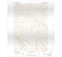 USGS Topo Map Oregon Skinners Fork 281542 1968 24000 Poster