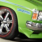 Green Holden Sandman by John Jovic