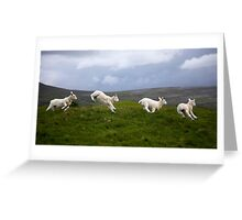 An Evening's Frolic In The Dales Greeting Card