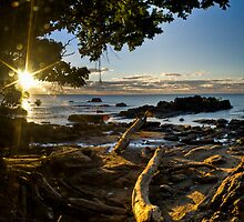 Etty Bay Sunrise, North Qld by Giovanna Devlin