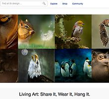 Beautiful Animals - 15 May 2011 by The RedBubble Homepage