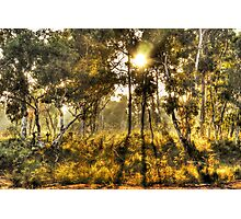 Dawn Light, Hill End Photographic Print