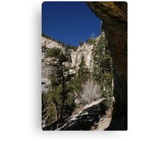 Mary Jane Falls Canvas Print