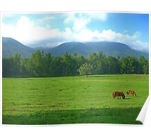 Horses in the Valley - Cades Cove Poster