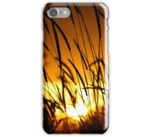 Sunset Through an Irish Field iPhone Case/Skin