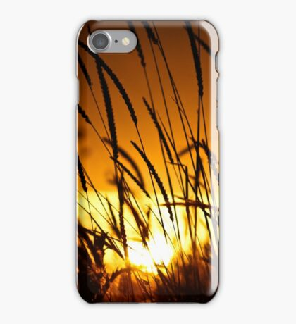 Sunset Through an Irish Field iPhone Case/Skin