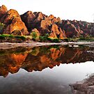 Reflections in Piccaninny Creek in the Bungle Bungles by Alwyn Simple