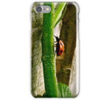 A Ladybug scaling a stem of a blackberry bush iPhone Case/Skin