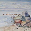 Muirs Beach by ddonovan