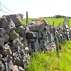 Dry Stone Wall by Pippa Carvell